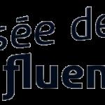 logo du musée des Confluences